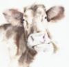 cow_light