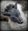 eleanora_fox userpic