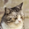 Печаль и уныние