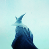 tolkien: gray wizard
