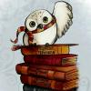 NH Book + Owl