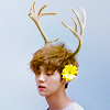 lulu deer