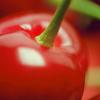 red:cherriesone