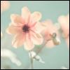 f_enya userpic
