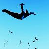DC Nightwing freefall