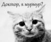 mora_ran userpic