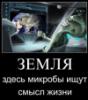 sinebur1