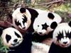 crazy_fun413 userpic