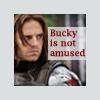 Bucky Not Amused
