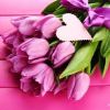 Purple flowers and heart