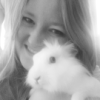 rabbit, Penny