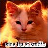 anei userpic