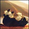 asfaloth14 [userpic]