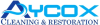 aycox1 userpic