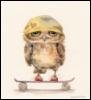 owlim userpic
