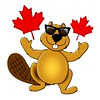 canada_beaver