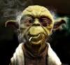 Yoda Old
