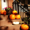 Autumn Brooklyn stoop 1