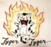 tyger_tyger