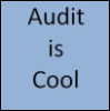 audit_is_cool userpic