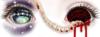✧・゚:*~TwinkleBatLady~*:・゚✧