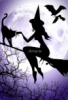 witchy2