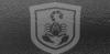 scorpioncoating userpic