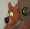 Scooby Disguise