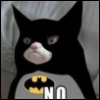 bat_cat