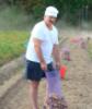 Картофельное поле чудес