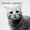 majorliza userpic