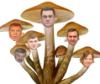 Пушкинский гриб