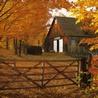 Домик осенью