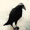 i.: crow