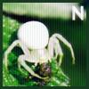 thewhitespider userpic