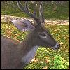 Crown of Antlers