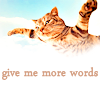 1MW-cat-give more words