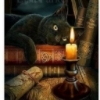 black cat and candle