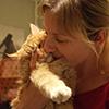 любовь и котики