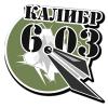 kalibr603 userpic