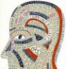 mozgoyogi userpic