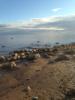 aleksey_mole userpic