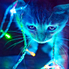 Christmas Cat Lights