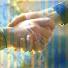 alumfelga: dw hands