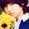 Inoo: sunflower