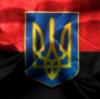 """""""Это не конец, а только начало"""", - Эро о соглашении по разведению сторон на Донбассе - Цензор.НЕТ 6540"""