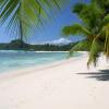 прозрачное море, пальмы, райская жизнь