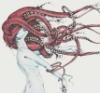 monstersbride userpic
