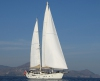 yacht_zina userpic