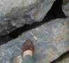climbing stones